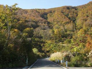 141018_1416_県道上越飯山線(関田峠)