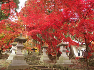 141115_1201_若穂保科・清水寺の紅葉(長野市)