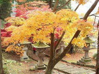 141115_1206_若穂保科・清水寺の紅葉(長野市)