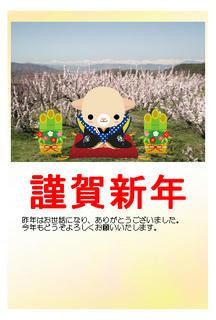 15_年賀状(背景:長野市松代町東条から撮影した満開のあんずと北アルプス)