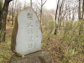 150411_1002_国指定史跡 梨久保遺跡(岡谷市)