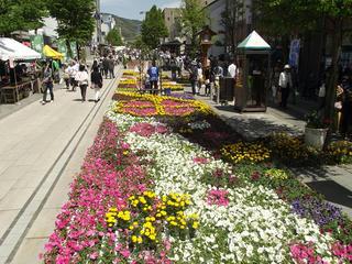 150503_1052_善光寺花回廊 ながの花フェスタ2015(長野市)