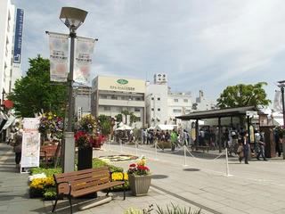 150503_0949_善光寺花回廊 ながの花フェスタ2015(長野市)