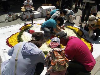 150503_1042_善光寺花回廊 ながの花フェスタ2015(長野市)