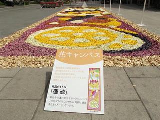 150503_0953_善光寺花回廊 ながの花フェスタ2015(長野市)