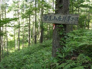 150725_0815_守屋山(伊那市)