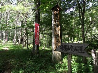 150725_0818_守屋山・キャンプ場(諏訪市)