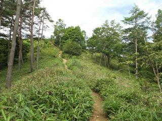 150725_0905_守屋山(諏訪市)
