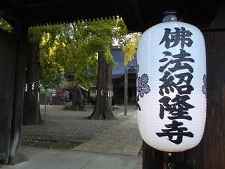 161105_0830_佛法招隆寺のイチョウ(諏訪市)