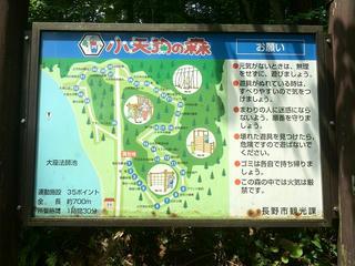 170707_1037_小天狗の森(長野市)