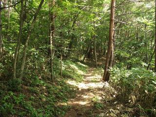 170811_1310_葛山山頂から郷路山へ(長野市)