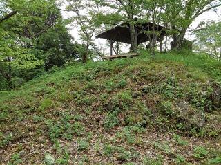 190823_1122_象山登山道(長野市松代町)