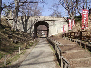 200224_1300_上田城跡公園・けやき並木遊歩道(上田市)