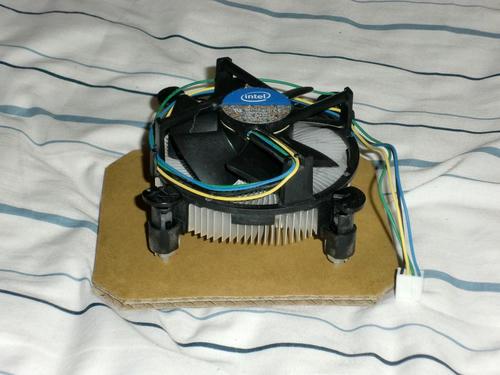 CIMG0801.JPG