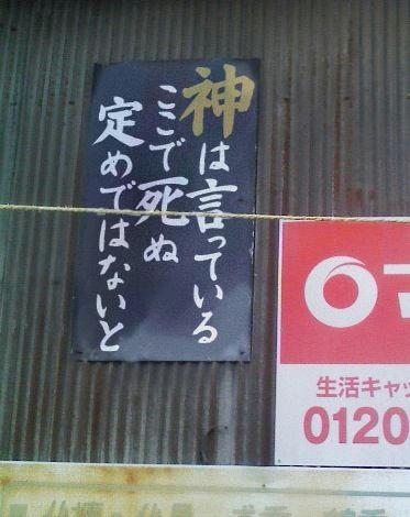 645_20100930034237.jpg