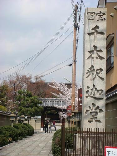 20100406senbonsyakado.jpg