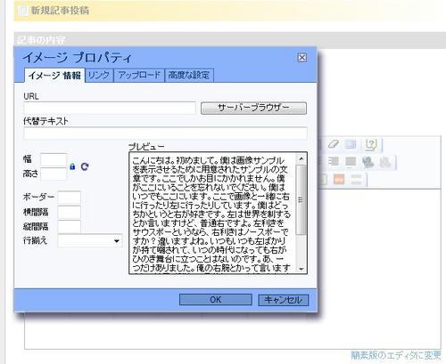 20110708ninja.JPG