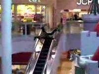 エスカレーターの滑り方