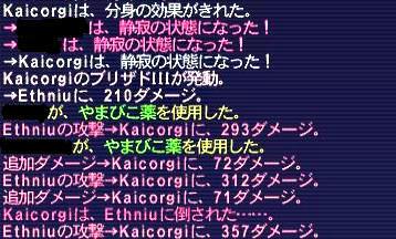09.11.19エスニウ被ダメ