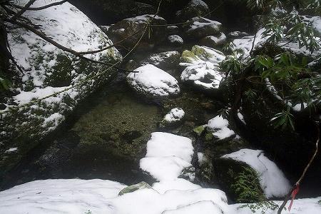2007123005.jpg