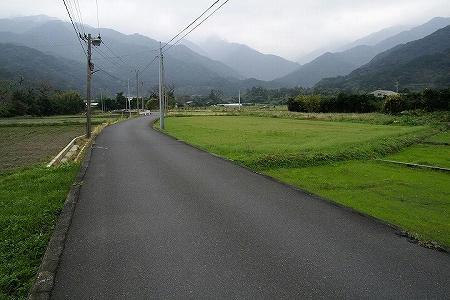 2007122903.jpg