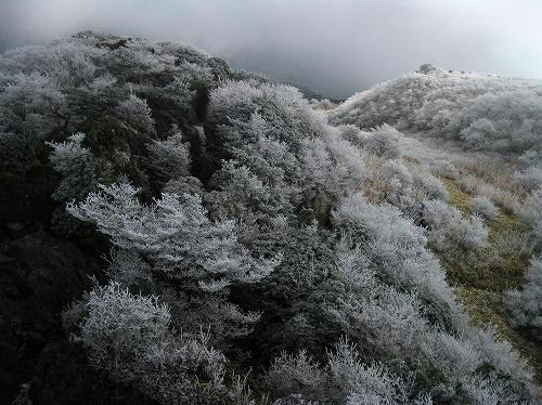 2009120613.jpg