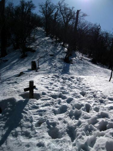 2011022220.jpg