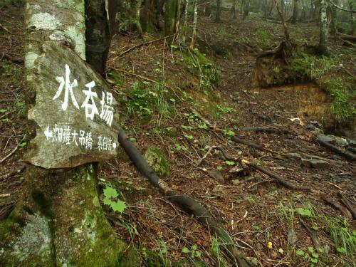 2011080215.jpg