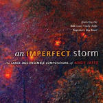 An Imperfect Storm