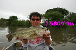 f70bd278.jpg