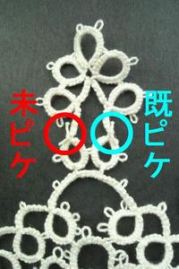 P1000185-1.jpg