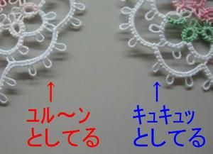 IMG_8204-2.jpg