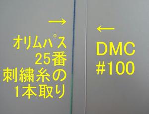 IMG_9157-1.jpg