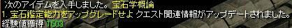 main202.jpg