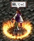 main204.jpg