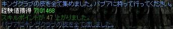 kani-3.jpg