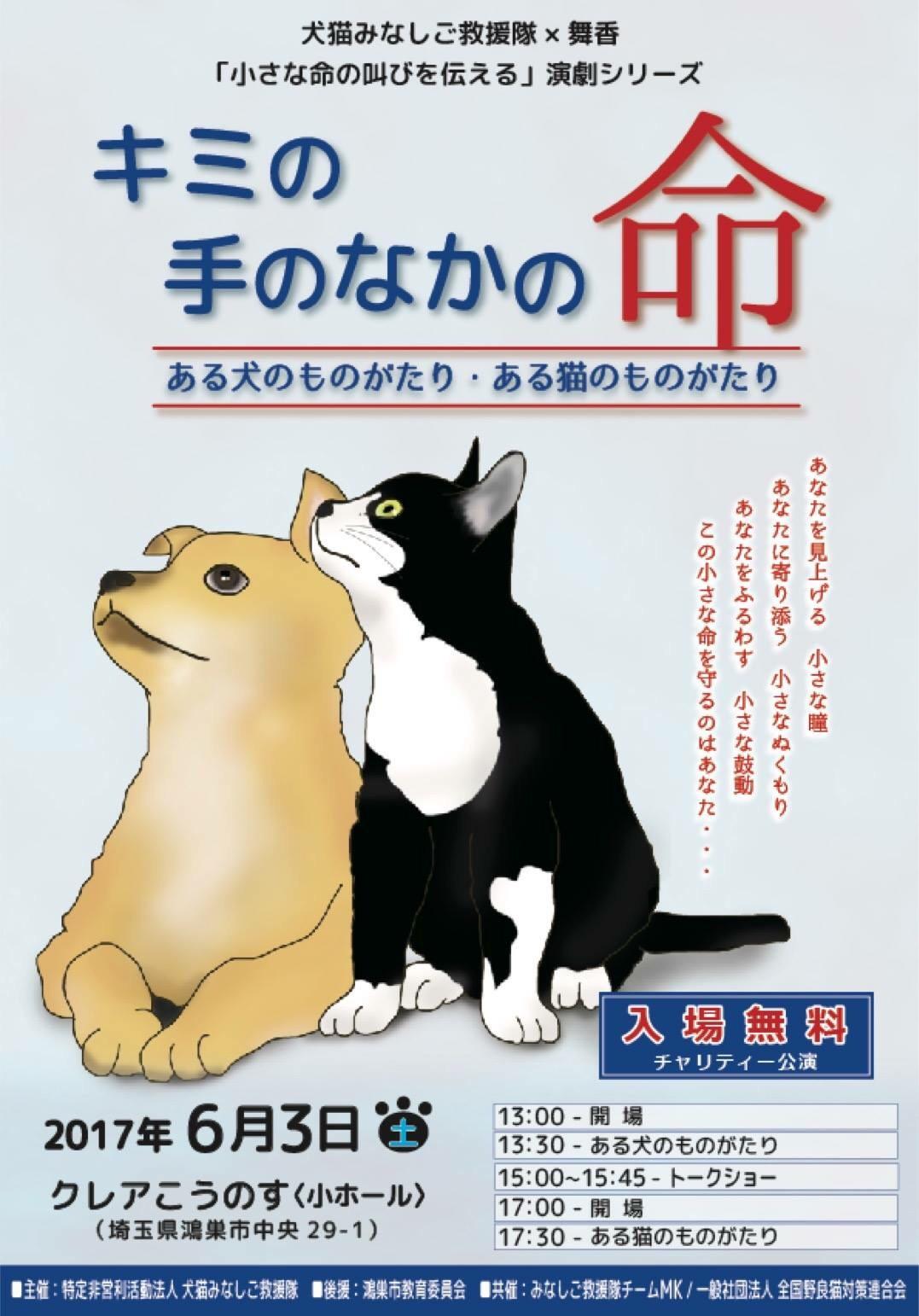 救援 隊 みなし 百合 ご ブログ 犬 中谷 猫