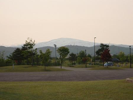 ゆ~チェリーから見た月山