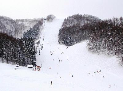 水上宝台樹スキー場パラダイスコース
