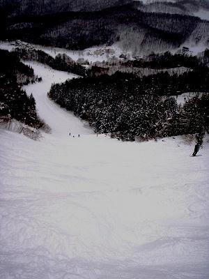 水上宝台樹スキー場ダウンヒルコース