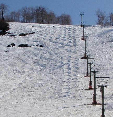 奥只見丸山スキー場 カモシカAコース下部_モーグルのライン
