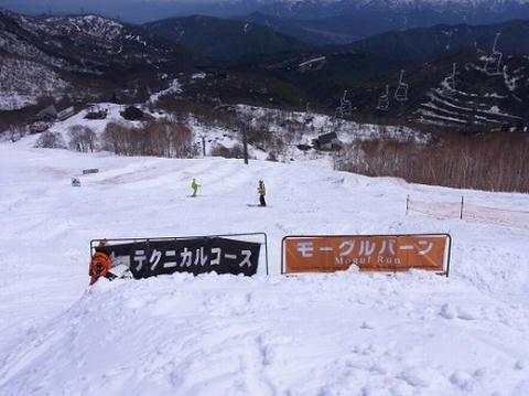かぐらスキー場 モーグルコース