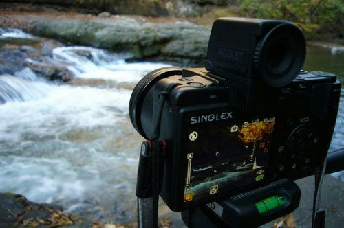 秋の真野川撮影
