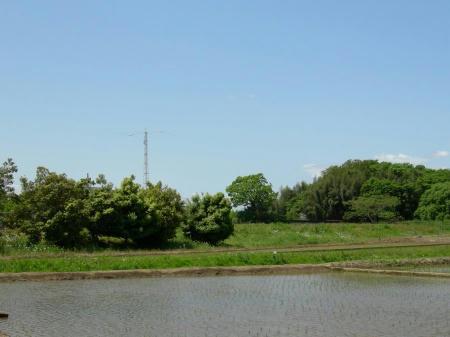 家の前の景色1