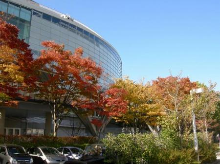 りゅーとぴあ2010-2