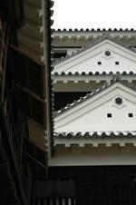 matsuyamajo.jpg