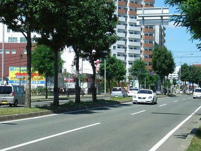 HKD36.jpg