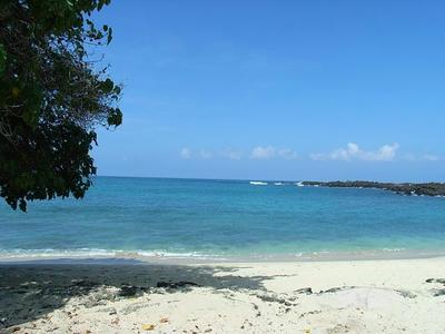 hawaii2009_20.jpg