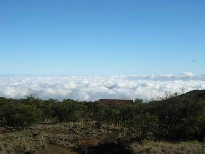 hawaii2009_29.jpg