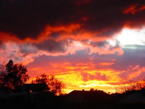 phoenix-storm15l.jpg